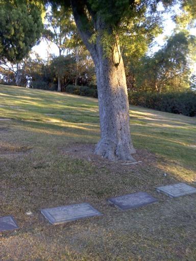 Find a Grave - Margaret Louise Haymond Towse — Minchin Genealogy